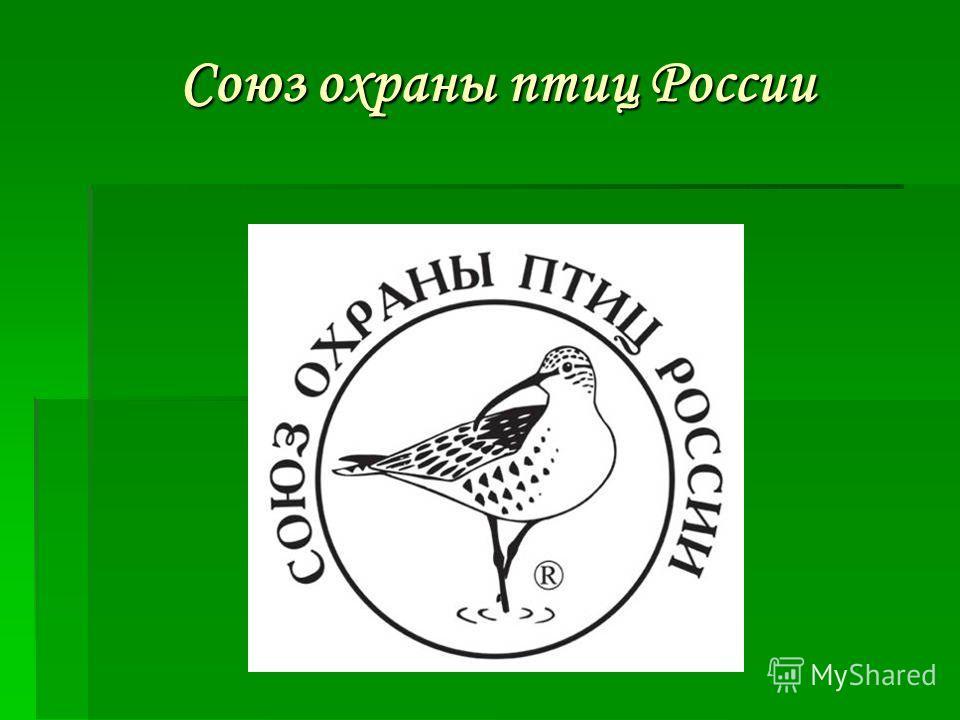 Союз охраны птиц России