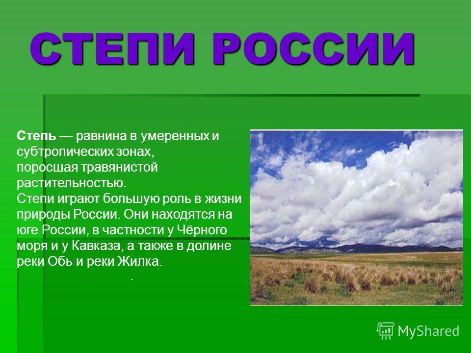 Степь равнина в умеренных и субтропических зонах, поросшая травянистой растительностью. Степи играют большую роль в жизни природы России. Они находятся на юге России, в частности у Чёрного моря и у Кавказа, а также в долине реки Обь и реки Жилка.. СТ