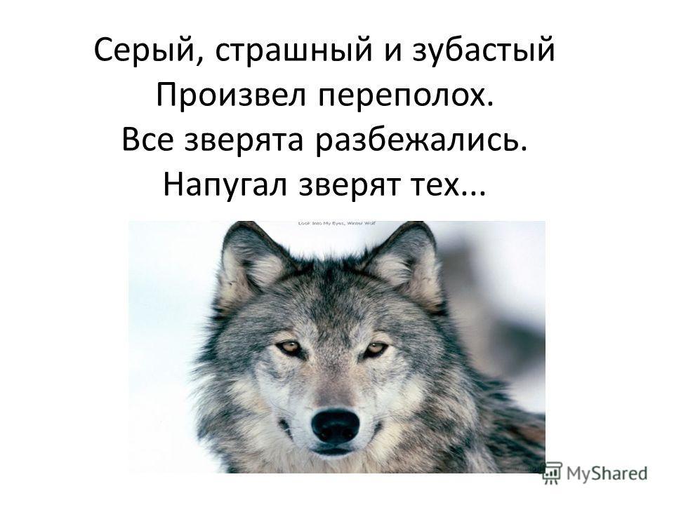 Серый, страшный и зубастый Произвел переполох. Все зверята разбежались. Напугал зверят тех...
