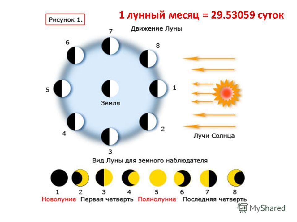 1 лунный месяц = 29.53059 суток