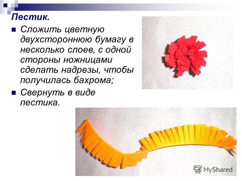 Пестик. Сложить цветную двухстороннюю бумагу в несколько слоев, с одной стороны ножницами сделать надрезы, чтобы получилась бахрома; Свернуть в виде пестика.