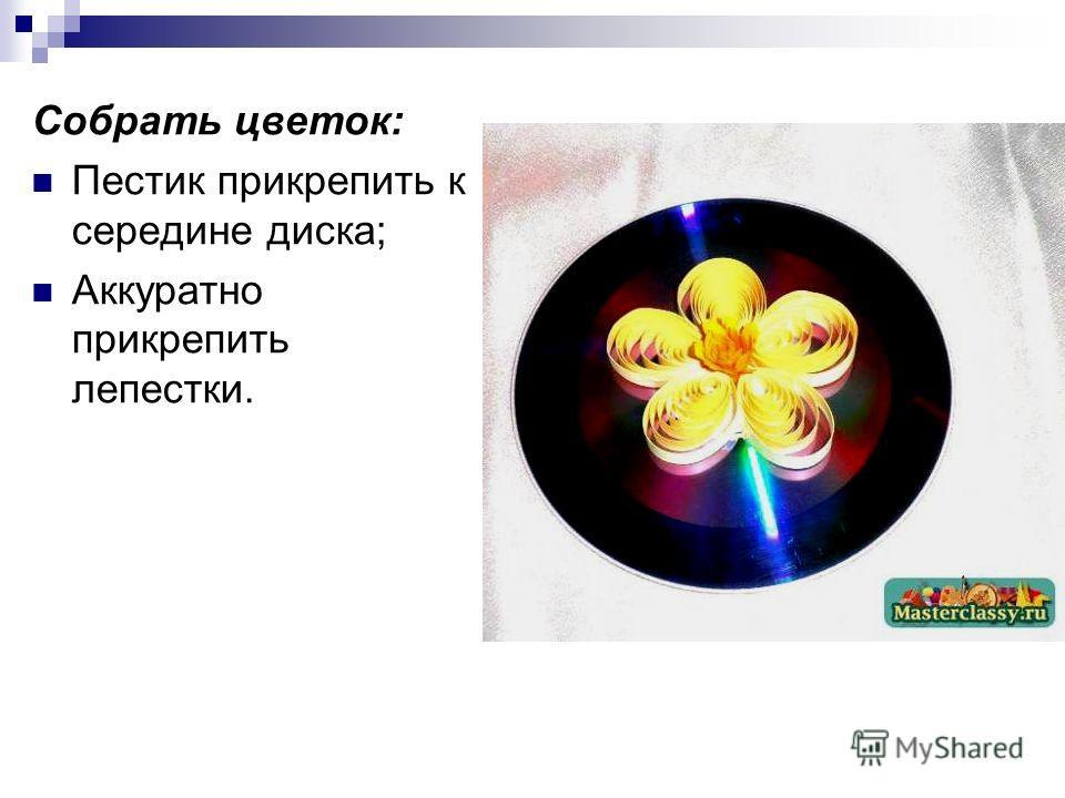Собрать цветок: Пестик прикрепить к середине диска; Аккуратно прикрепить лепестки.