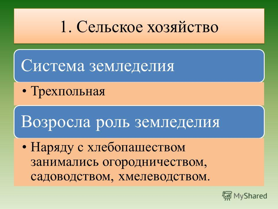 1. Сельское хозяйство Система земледелия Трехпольная Возросла роль земледелия Наряду с хлебопашеством занимались огородничеством, садоводством, хмелеводством.