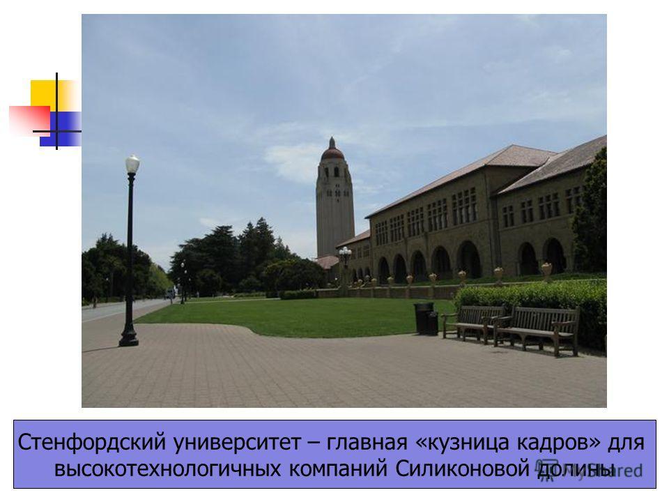 Стенфордский университет – главная «кузница кадров» для высокотехнологичных компаний Силиконовой долины