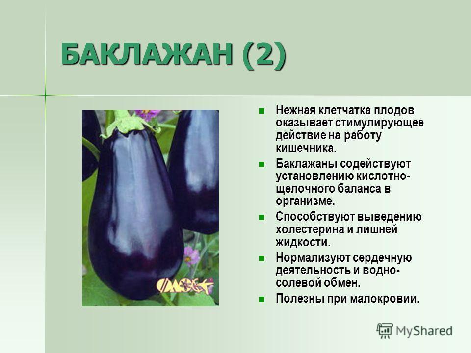 БАКЛАЖАН (2) Нежная клетчатка плодов оказывает стимулирующее действие на работу кишечника. Нежная клетчатка плодов оказывает стимулирующее действие на работу кишечника. Баклажаны содействуют установлению кислотно- щелочного баланса в организме. Бакла