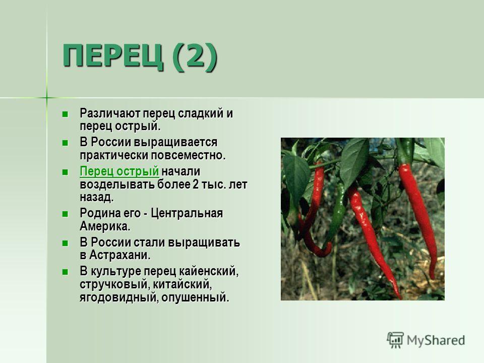 ПЕРЕЦ (2) Различают перец сладкий и перец острый. Различают перец сладкий и перец острый. В России выращивается практически повсеместно. В России выращивается практически повсеместно. Перец острый начали возделывать более 2 тыс. лет назад. Перец остр