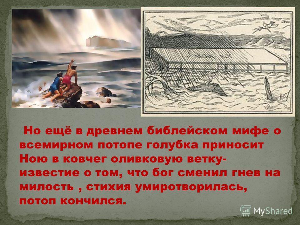 Но ещё в древнем библейском мифе о всемирном потопе голубка приносит Ною в ковчег оливковую ветку- известие о том, что бог сменил гнев на милость, стихия умиротворилась, потоп кончился.