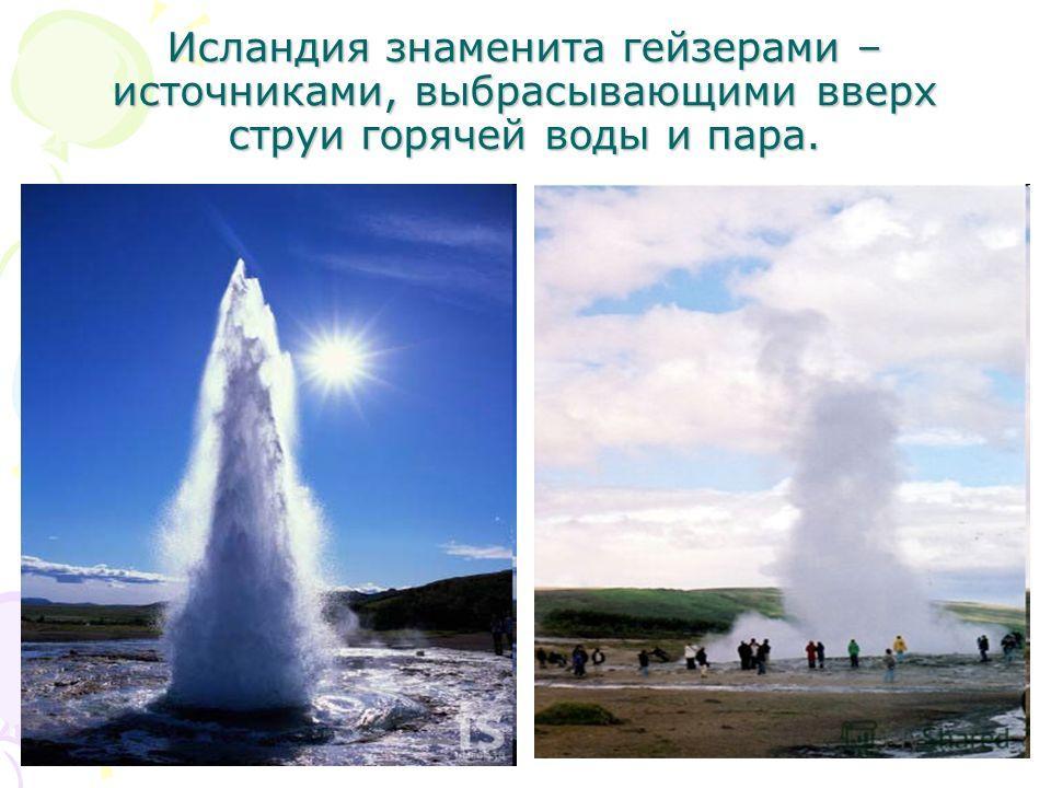 Исландия знаменита гейзерами – источниками, выбрасывающими вверх струи горячей воды и пара.