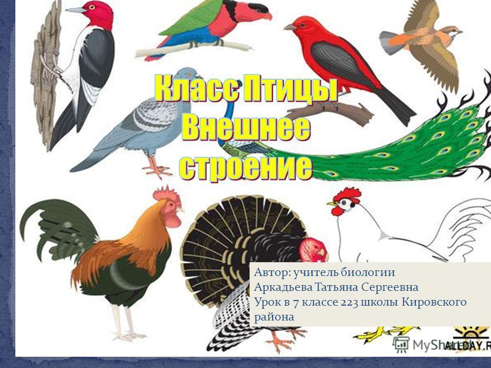 Автор: учитель биологии Аркадьева Татьяна Сергеевна Урок в 7 классе 223 школы Кировского района