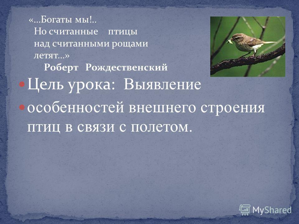 Цель урока: Выявление особенностей внешнего строения птиц в связи с полетом. «…Богаты мы!.. Но считанные птицы над считанными рощами летят…» Роберт Рождественский