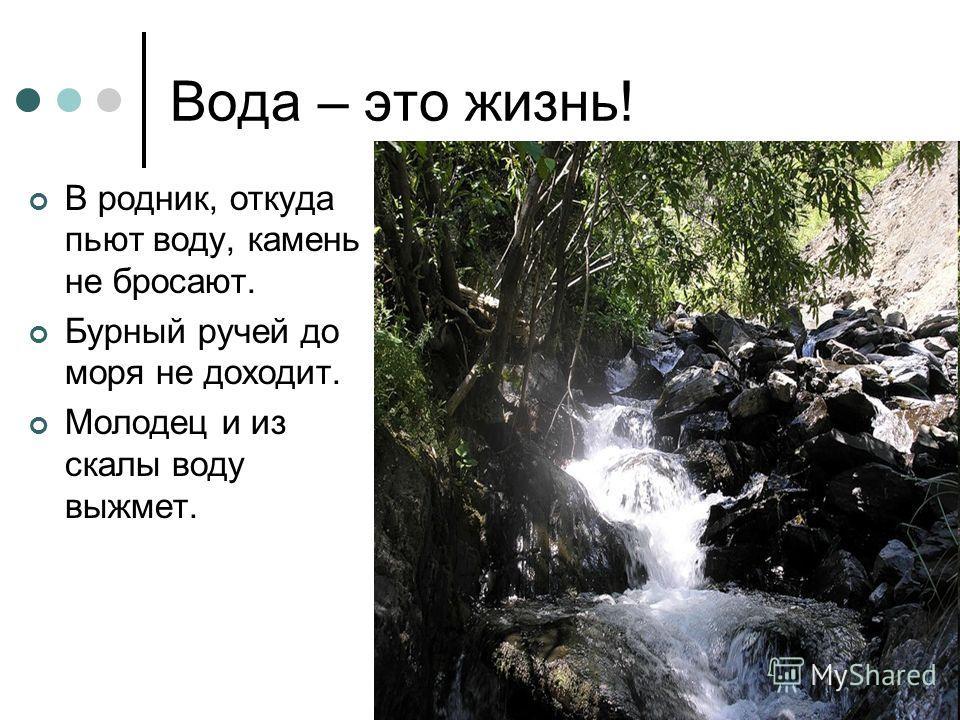 Вода – это жизнь! В родник, откуда пьют воду, камень не бросают. Бурный ручей до моря не доходит. Молодец и из скалы воду выжмет.
