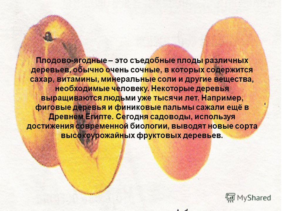Плодово-ягодные – это съедобные плоды различных деревьев, обычно очень сочные, в которых содержится сахар, витамины, минеральные соли и другие вещества, необходимые человеку. Некоторые деревья выращиваются людьми уже тысячи лет. Например, фиговые дер