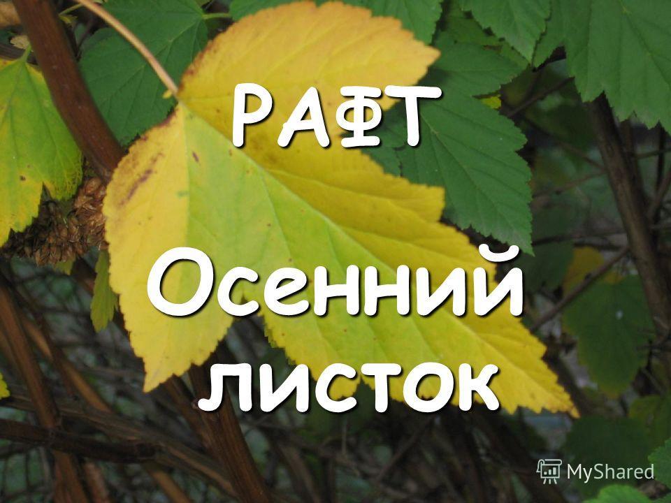 РАФТ Осенний листок