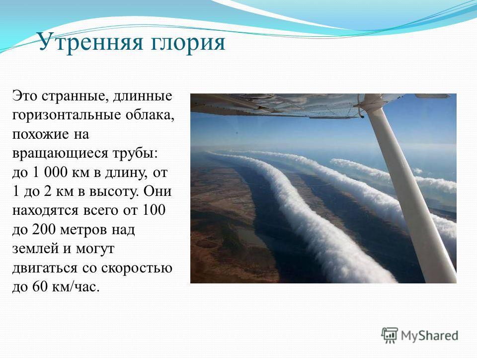 Утренняя глория Это странные, длинные горизонтальные облака, похожие на вращающиеся трубы: до 1 000 км в длину, от 1 до 2 км в высоту. Они находятся всего от 100 до 200 метров над землей и могут двигаться со скоростью до 60 км/час.