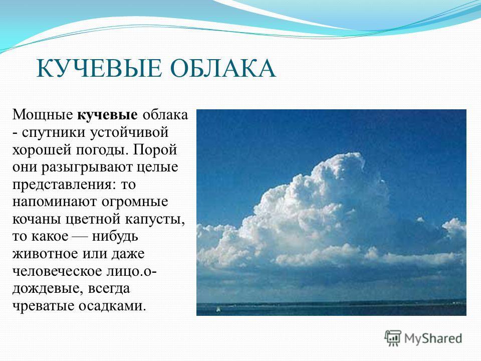 КУЧЕВЫЕ ОБЛАКА Мощные кучевые облака - спутники устойчивой хорошей погоды. Порой они разыгрывают целые представления: то напоминают огромные кочаны цветной капусты, то какое нибудь животное или даже человеческое лицо.о- дождевые, всегда чреватые осад