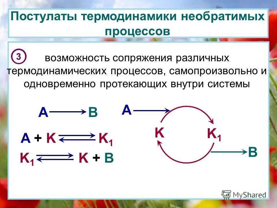 Постулаты термодинамики необратимых процессов 3 возможность сопряжения различных термодинамических процессов, самопроизвольно и одновременно протекающих внутри системы A B K K1K1 A B A + K K1K1 K1K1 K + B