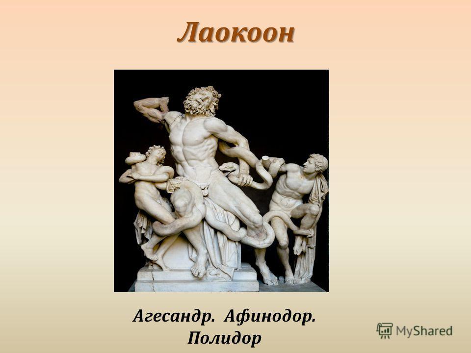 Лаокоон Агесандр. Афинодор. Полидор