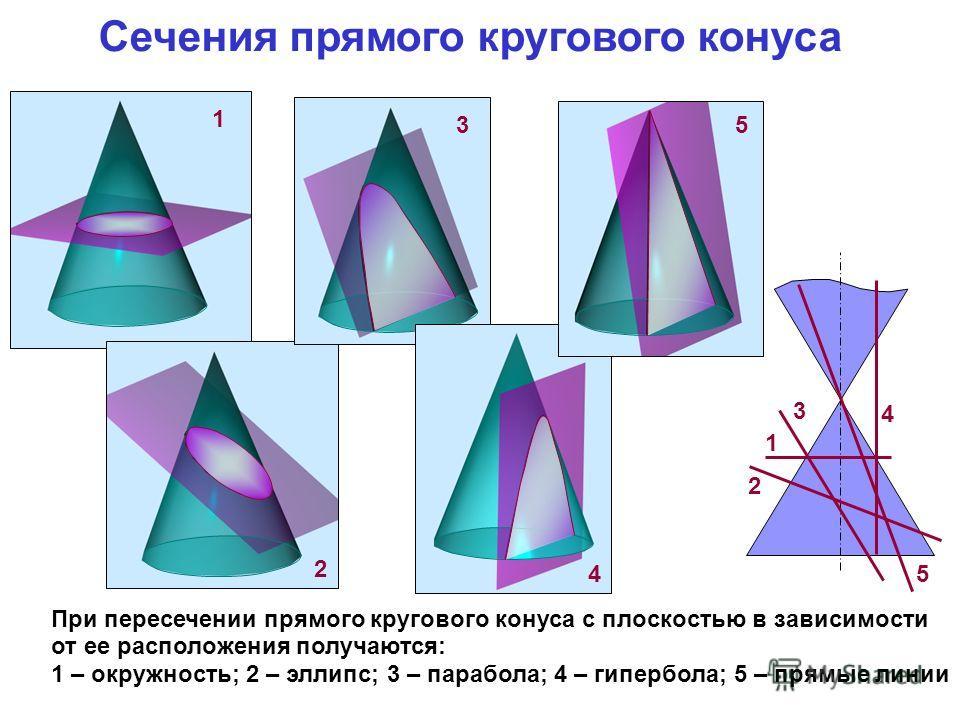1 Сечения прямого кругового конуса При пересечении прямого кругового конуса с плоскостью в зависимости от ее расположения получаются: 1 – окружность; 2 – эллипс; 3 – парабола; 4 – гипербола; 5 – прямые линии 1 2 3 4 5 2 3 4 5