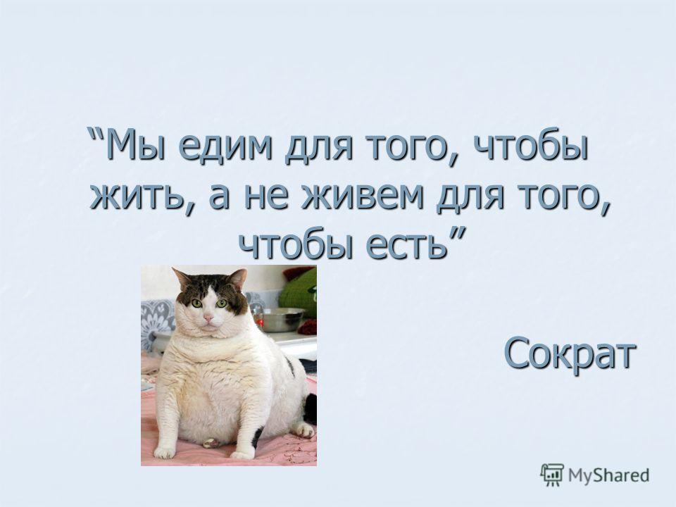 Мы едим для того, чтобы жить, а не живем для того, чтобы естьМы едим для того, чтобы жить, а не живем для того, чтобы есть Сократ Сократ