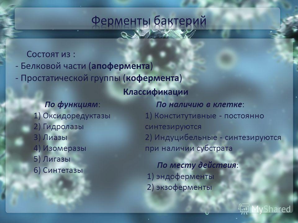 Состоят из : - Белковой части (апофермента) - Простатической группы (кофермента) По месту действия: 1) эндоферменты 2) экзоферменты По наличию в клетке: 1) Конститутивные - постоянно синтезируются 2) Индуцибельные - синтезируются при наличии субстрат