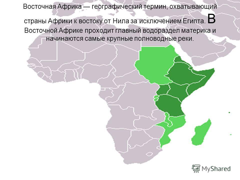 Восточная Африка географический термин, охватывающий страны Африки к востоку от Нила за исключением Египта. В Восточной Африке проходит главный водораздел материка и начинаются самые крупные полноводные реки.