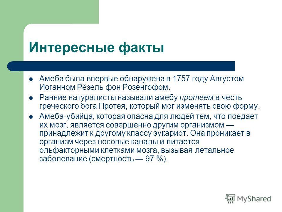 Интересные факты Амеба была впервые обнаружена в 1757 году Августом Иоганном Рёзель фон Розенгофом. Ранние натуралисты называли амёбу протеем в честь греческого бога Протея, который мог изменять свою форму. Амёба-убийца, которая опасна для людей тем,