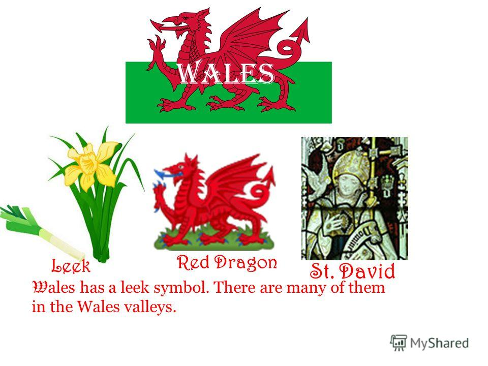 Wales St. David Leek Red Dragon W ales has a leek symbol. There are many of them in the Wales valleys.