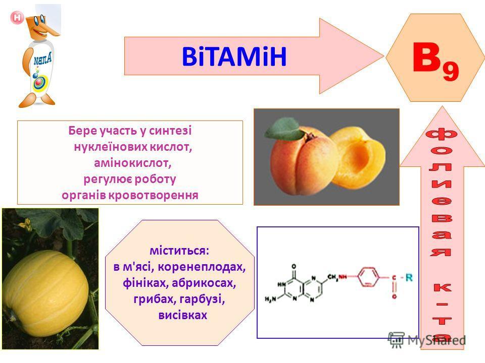 ВіТАМіН B9B9 Бере участь у синтезі нуклеїнових кислот, амінокислот, регулює роботу органів кровотворення міститься: в м'ясі, коренеплодах, фініках, абрикосах, грибах, гарбузі, висівках