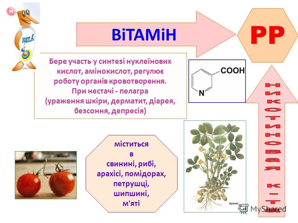 ВіТАМіН PP Бере участь у синтезі нуклеїнових кислот, амінокислот, регулює роботу органів кровотворення. При нестачі - пелагра (ураження шкіри, дерматит, діарея, безсоння, депресія) міститься в свинині, рибі, арахісі, помідорах, петрушці, шипшині, м'я