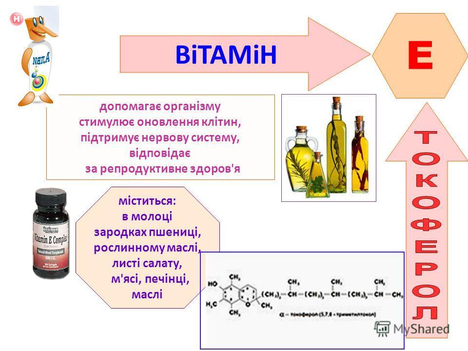 ВіТАМіН E допомагає організму стимулює оновлення клітин, підтримує нервову систему, відповідає за репродуктивне здоров'я міститься: в молоці зародках пшениці, рослинному маслі, листі салату, м'ясі, печінці, маслі