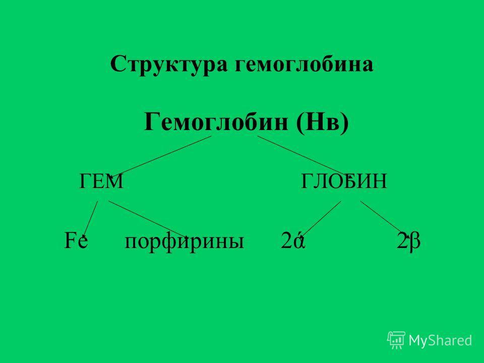 Структура гемоглобина Гемоглобин (Нв) ГЕМ ГЛОБИН Fe порфирины 2ά 2β