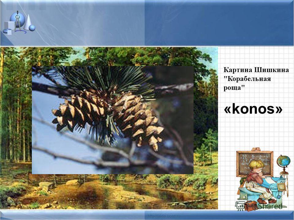 Картина Шишкина Корабельная роща «konos»