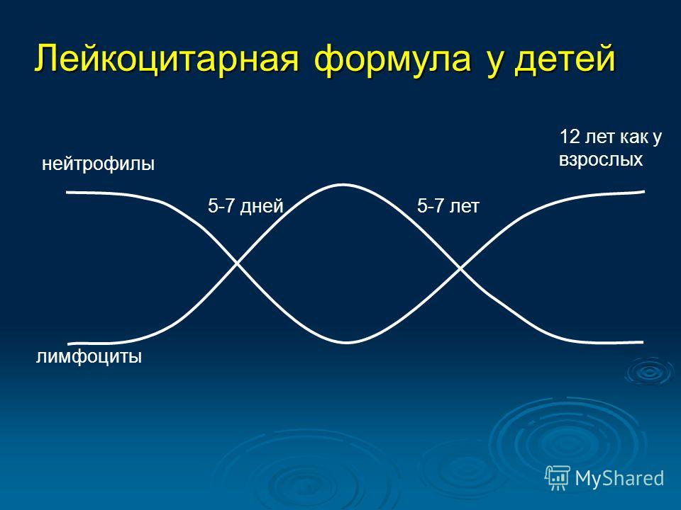 Лейкоцитарная формула у детей нейтрофилы лимфоциты 5-7 дней5-7 лет 12 лет как у взрослых