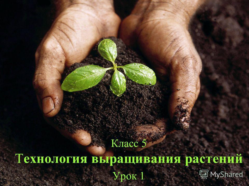 Класс 5 Технология выращивания растений Урок 1