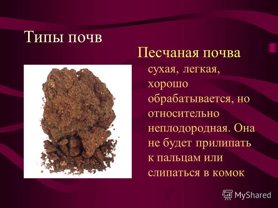 Типы почв Песчаная почва сухая, легкая, хорошо обрабатывается, но относительно неплодородная. Она не будет прилипать к пальцам или слипаться в комок