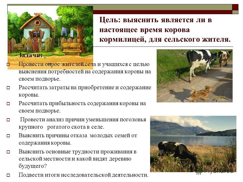 Задачи: Провести опрос жителей села и учащихся с целью выяснения потребностей на содержания коровы на своем подворье. Рассчитать затраты на приобретение и содержание коровы. Рассчитать прибыльность содержания коровы на своем подворье. Провести анализ