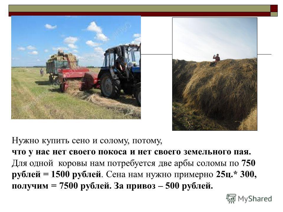 Нужно купить сено и солому, потому, что у нас нет своего покоса и нет своего земельного пая. Для одной коровы нам потребуется две арбы соломы по 750 рублей = 1500 рублей. Сена нам нужно примерно 25ц.* 300, получим = 7500 рублей. За привоз – 500 рубле