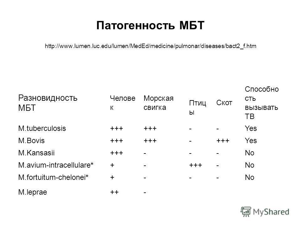 Патогенность МБТ http://www.lumen.luc.edu/lumen/MedEd/medicine/pulmonar/diseases/bact2_f.htm Разновидность МБТ Челове к Морская свигка Птиц ы Скот Способно сть вызывать TB M.tuberculosis+++ --Yes M.Bovis+++ - Yes M.Kansasii+++---No M.avium-intracellu