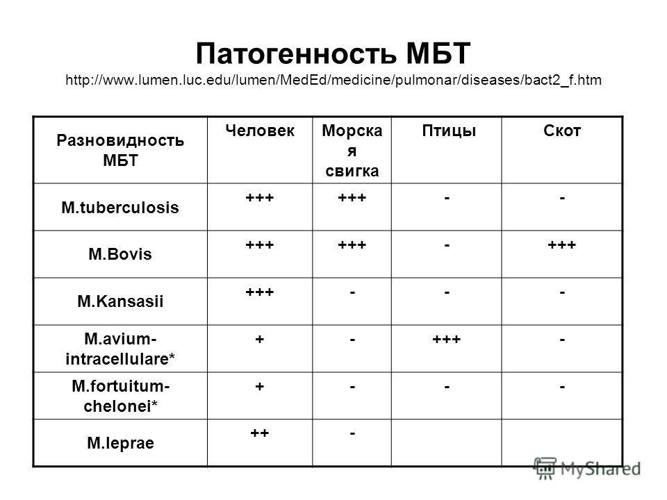 Патогенность МБТ http://www.lumen.luc.edu/lumen/MedEd/medicine/pulmonar/diseases/bact2_f.htm Разновидность МБТ ЧеловекМорска я свигка ПтицыСкот M.tuberculosis +++ -- M.Bovis +++ - M.Kansasii +++--- M.avium- intracellulare* +-+++- M.fortuitum- chelone