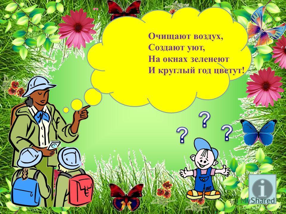 Выполнила Воспитатель Карталова Т.Н. 1 квалиф. категория