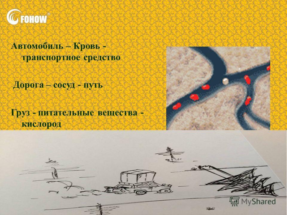 Автомобиль – Кровь - транспортное средство Дорога – сосуд - путь Груз - питательные вещества - кислород