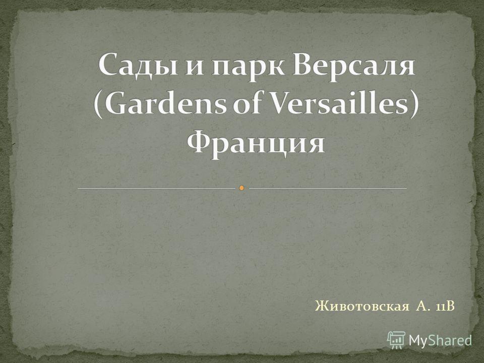 Животовская А. 11В