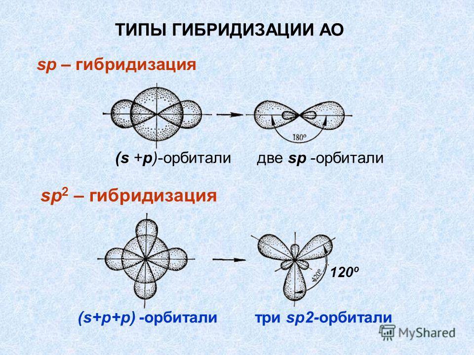sp 2 – гибридизация ТИПЫ ГИБРИДИЗАЦИИ АО sp – гибридизация 120º (s +р)-орбитали две sр -орбитали (s+p+p) -орбитали три sp2-орбитали