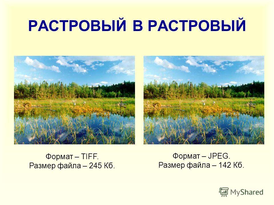 РАСТРОВЫЙ В РАСТРОВЫЙ Формат – TIFF. Размер файла – 245 Кб. Формат – JPEG. Размер файла – 142 Кб.