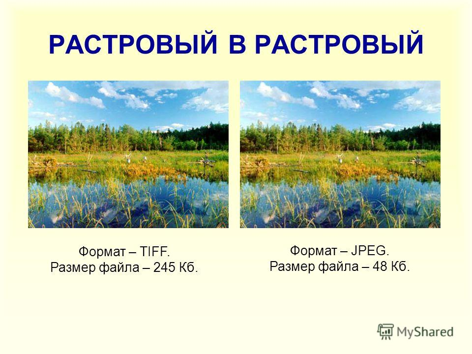 РАСТРОВЫЙ В РАСТРОВЫЙ Формат – TIFF. Размер файла – 245 Кб. Формат – JPEG. Размер файла – 48 Кб.