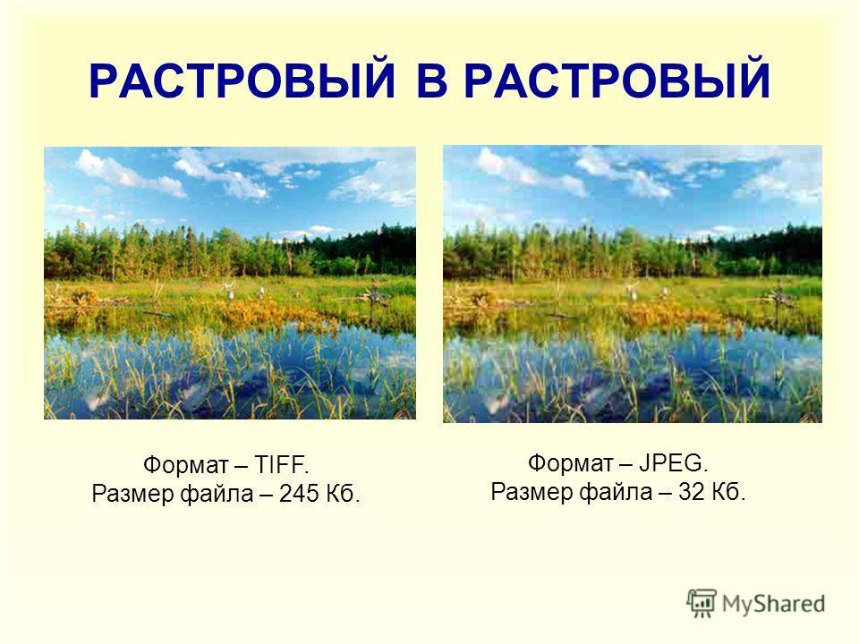 РАСТРОВЫЙ В РАСТРОВЫЙ Формат – TIFF. Размер файла – 245 Кб. Формат – JPEG. Размер файла – 32 Кб.