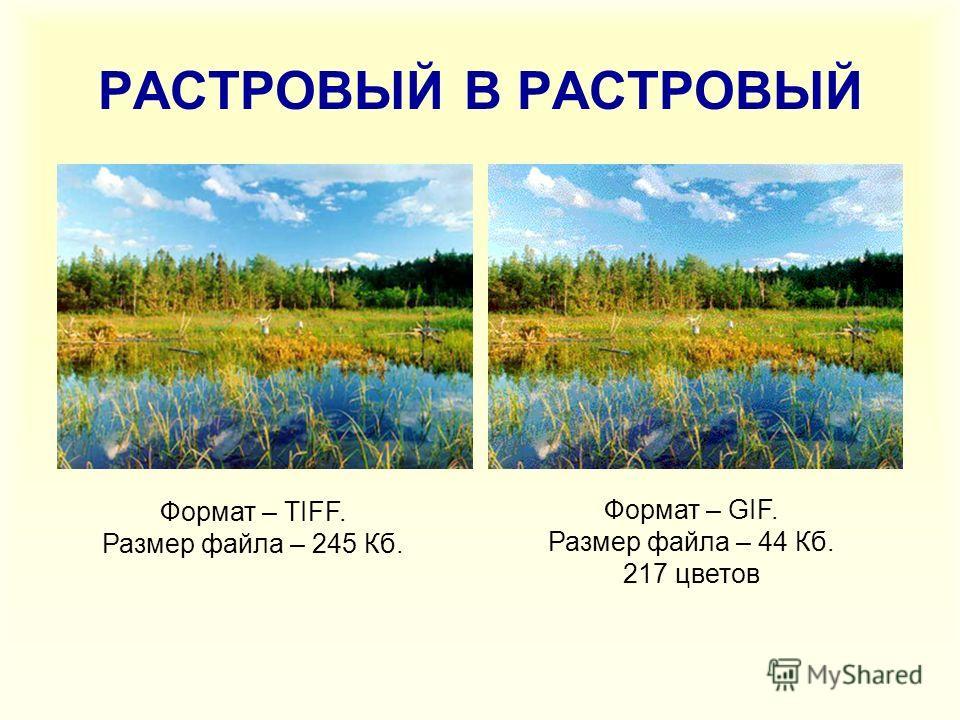 РАСТРОВЫЙ В РАСТРОВЫЙ Формат – TIFF. Размер файла – 245 Кб. Формат – GIF. Размер файла – 44 Кб. 217 цветов