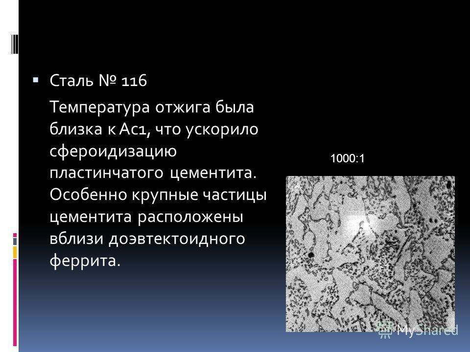 Сталь 116 Температура отжига была близка к Ас1, что ускорило сфероидизацию пластинчатого цементита. Особенно крупные частицы цементита расположены вблизи доэвтектоидного феррита. 1000:1