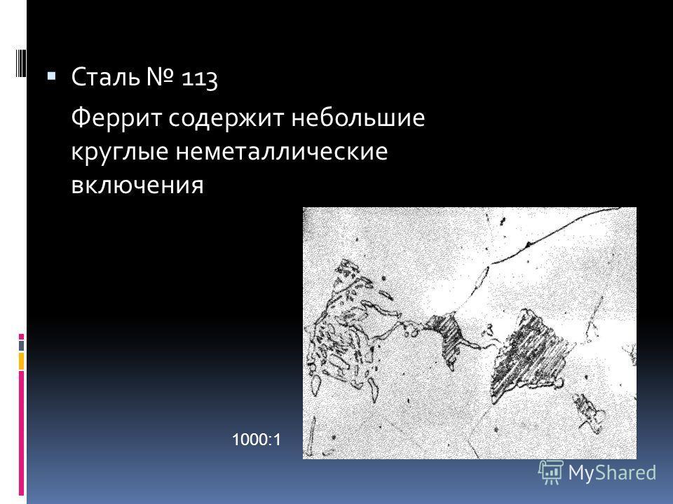 Сталь 113 Феррит содержит небольшие круглые неметаллические включения 1000:1