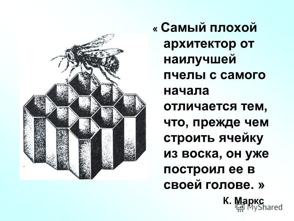 « Самый плохой архитектор от наилучшей пчелы с самого начала отличается тем, что, прежде чем строить ячейку из воска, он уже построил ее в своей голове. » К. Маркс